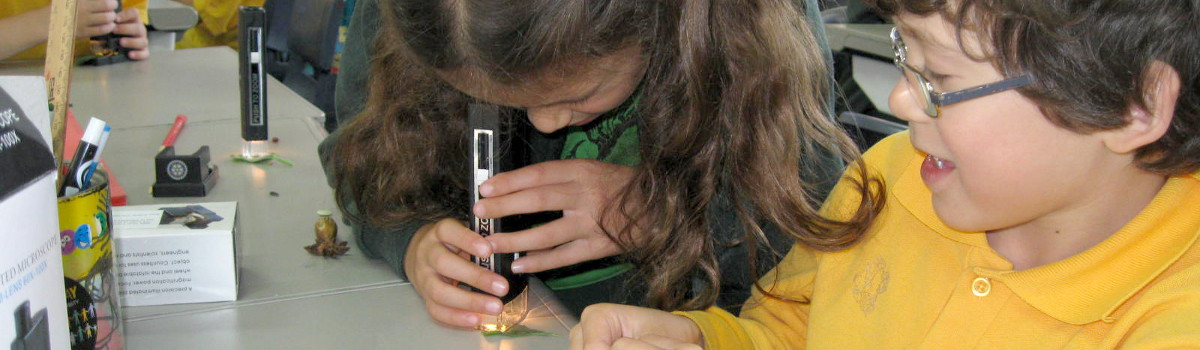 Microscopes in Schools